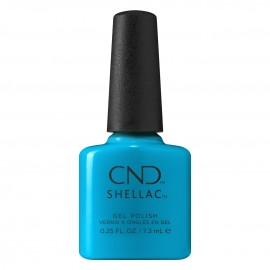 Shellac Pop-up Pool Party...