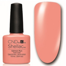 Shellac Salmon Run